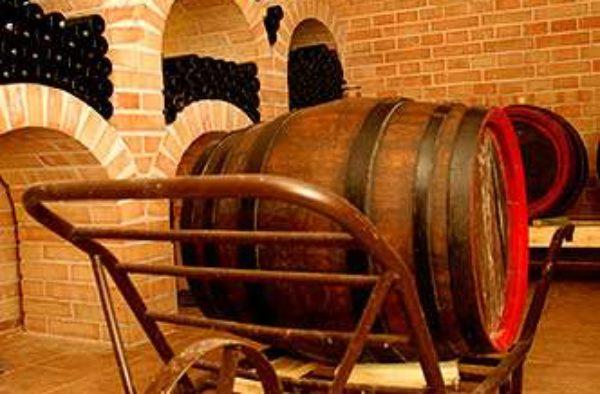Vinařství